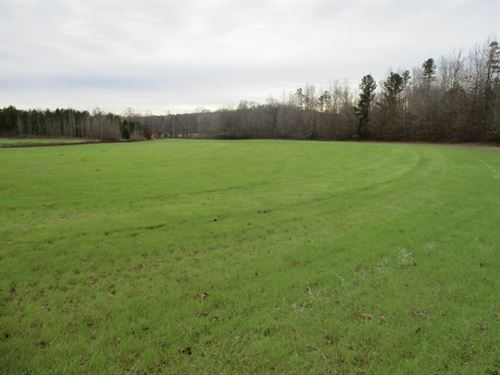 109 Acres Hunting & Cropland : Bethel Springs : Chester County : Tennessee