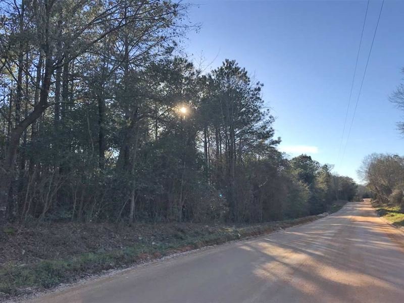 Jack Road Tract : Atmore : Escambia County : Alabama
