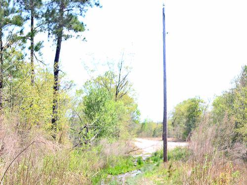 Marlboro Co Sc Acreage : McColl : Marlboro County : South Carolina