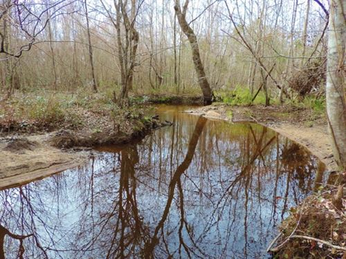 $1,795 Per Acre, Good Hunting : Sandersville : Washington County : Georgia