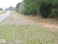 Alabama Highway 22 Hunting & Timber : Valley Grande : Dallas County : Alabama