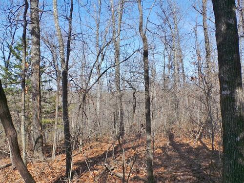 Large Acreage Close To Bull Shoals : Yellville : Marion County : Arkansas
