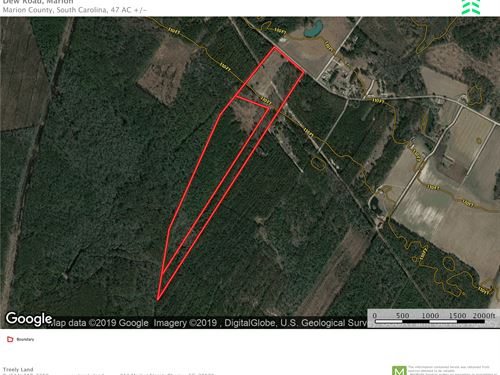 Marion County Sc Acreage : Marion : South Carolina