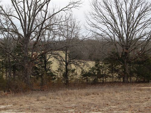 Acres For Sale In Southern Mo : Mountain Grove : Texas County : Missouri