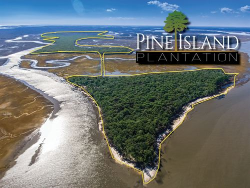 Pine Island Plantation : Saint Helena Island : Beaufort County : South Carolina