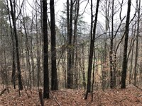 124+ Private Acres In The N Ga Mtns : Talking Rock : Pickens County : Georgia