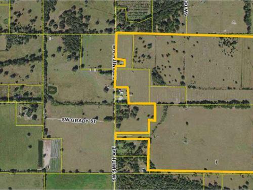 140 Acre Ranch Near Arcadia, FL : Arcadia : De Soto County : Florida
