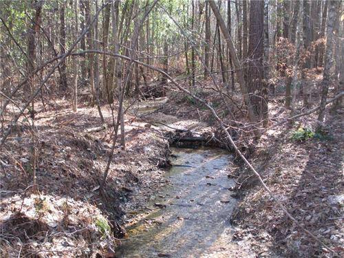 Beautiful Timberland With Creek : Marbury : Autauga County : Alabama