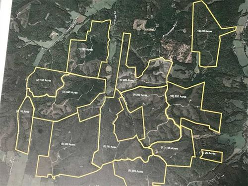 3000 Acre Prime Hunting And Timber : Dover : Stewart County : Tennessee