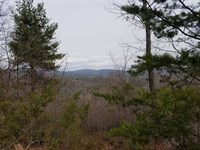 41.18 Acres in Connelly Springs : Connelly Springs : Burke County : North Carolina