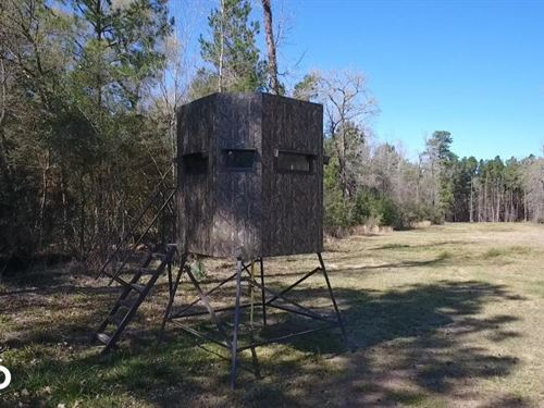 Hunting-Recreational Tract : Montgomery : Texas