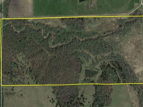 Davis County Recreational & Hunting : Moulton : Davis County : Iowa