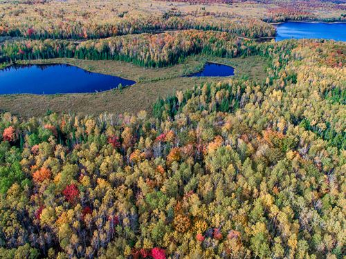 Great Price For 16 Acres On Water : Presque Isle : Vilas County : Wisconsin
