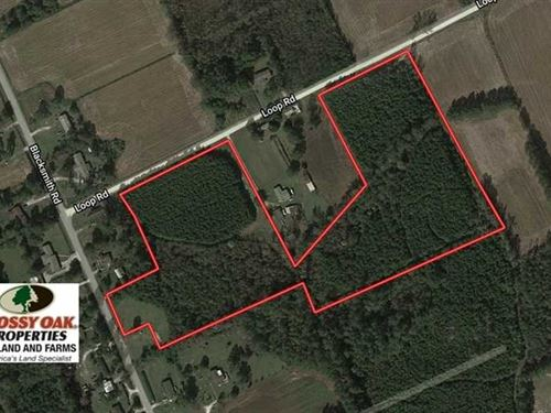 15.2 Acres of Hunting, Timber, And : Bolton : Columbus County : North Carolina