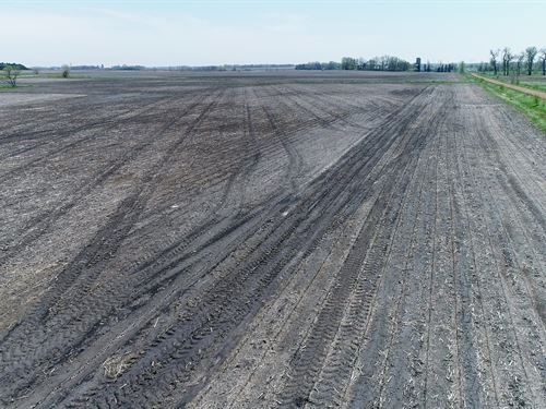 151.5 Acres Crop & Rim Land Lincoln : Arco : Lincoln County : Minnesota