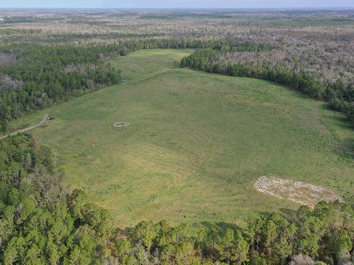 Clermont Ranch & Recreational Tract : Clermont : Lake County : Florida