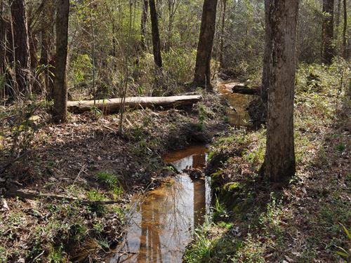 Greshamville Tract B : Greensboro : Greene County : Georgia