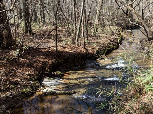 Napolean Pines Tract A 17+/- Acres : Woodland : Randolph County : Alabama