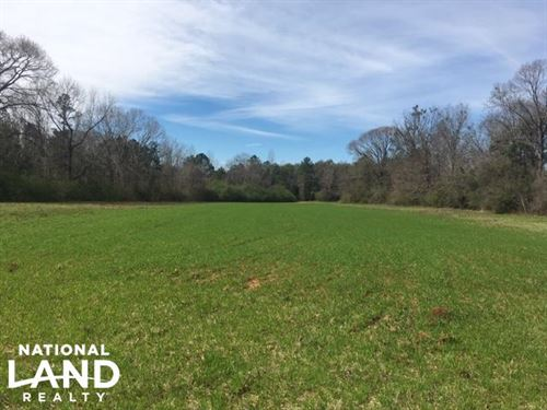 Independence Timber & Hunting Tract : Prattville : Autauga County : Alabama