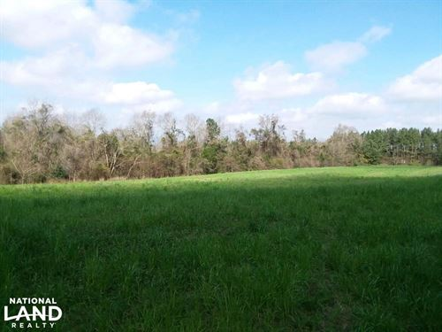 Red Level Homesite & Cropland Tract : Red Level : Covington County : Alabama