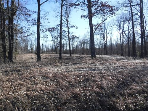 Vacant Land For Sale : Pocahontas : Randolph County : Arkansas