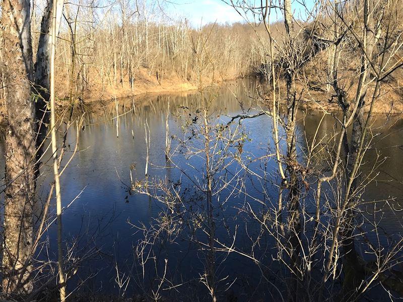 Williams Hollow Rd, 125 Acres : Gallipolis : Gallia County : Ohio