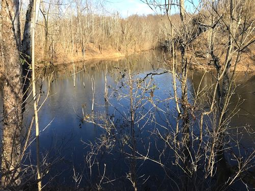 Williams Hollow Rd, 125 Acres : Gallipolis : Gallia County : Ohio
