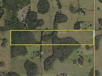 Polk County Acreage : Lakeland : Polk County : Florida