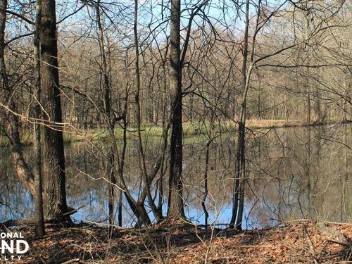 39 Acres Timber/Deer Hunting/Homesi : Oak Grove : West Carroll Parish : Louisiana