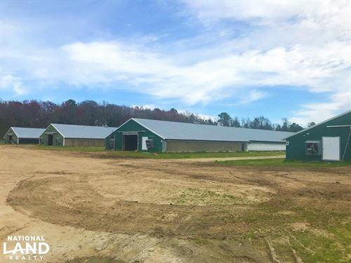 Bowman Chicken Farm : Bowman : Orangeburg County : South Carolina