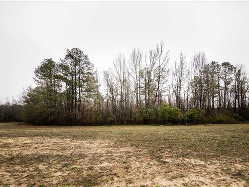 A Great Land Ownership Opportunity : Clio : Marlboro County : South Carolina