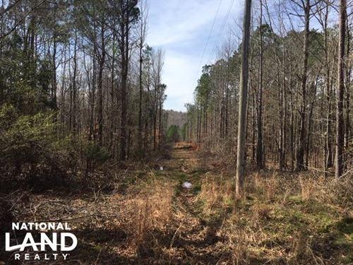 Boardtree Creek Hunting & Timber Tr : Hamilton : Marion County : Alabama
