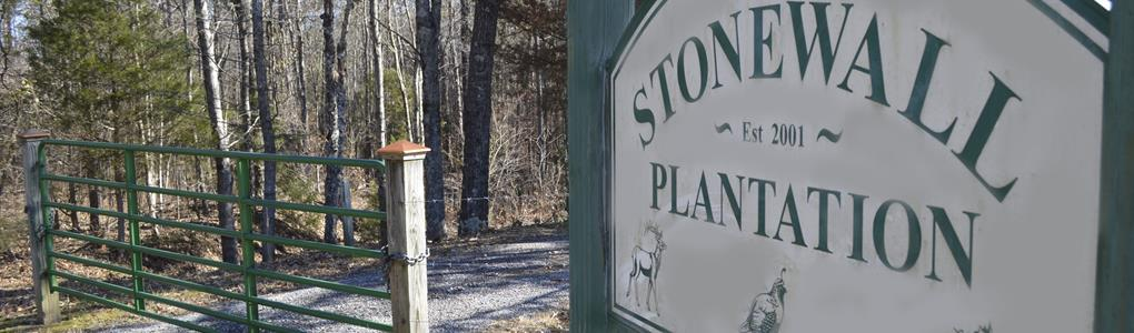 Stonewall Plantation : Clinton : Laurens County : South Carolina