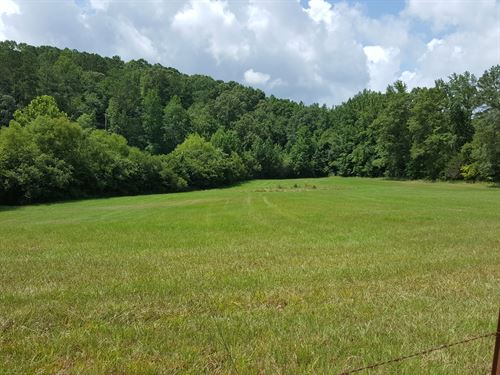 Little Hatchet Creek Farm : Goodwater : Clay County : Alabama