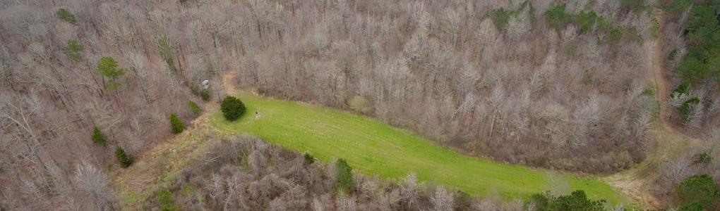 246 Ac, Hunting & Recreational : Black Hawk : Carroll County : Mississippi