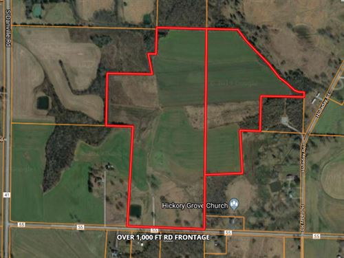 85 Acres Row Cropland/Pasture : Danville : Morgan County : Alabama