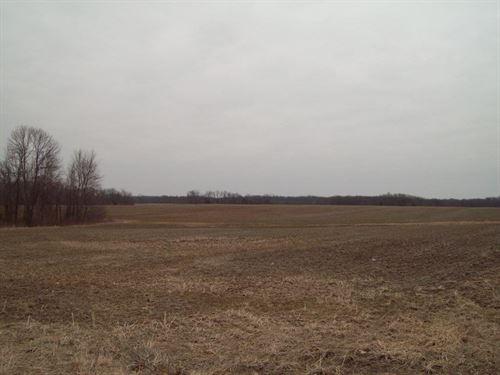Online Only Farm Land Auction : Jonesburg : Warren County : Missouri