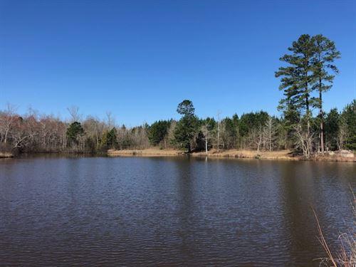 Pond Cabin Big Timber : Sparta : Hancock County : Georgia