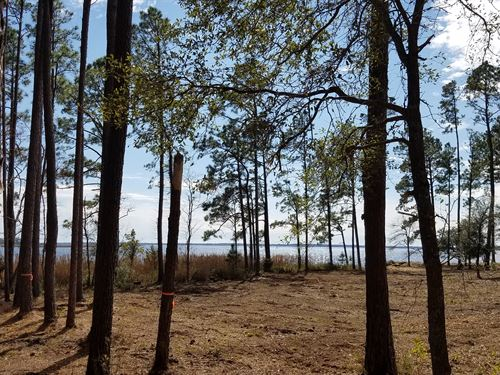 Coastal Nc Waterfront Acreage : New Bern : Pamlico County : North Carolina