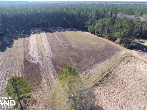 Marion Woods Farm : Cordesville : Berkeley County : South Carolina