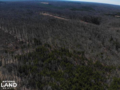 Louisa County Timberland : Mineral : Louisa County : Virginia