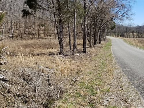 61 Acre Country Property, Creeks : Linden : Perry County : Tennessee
