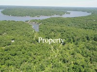 Owner Financed 81 Acres : Camdenton : Camden County : Missouri