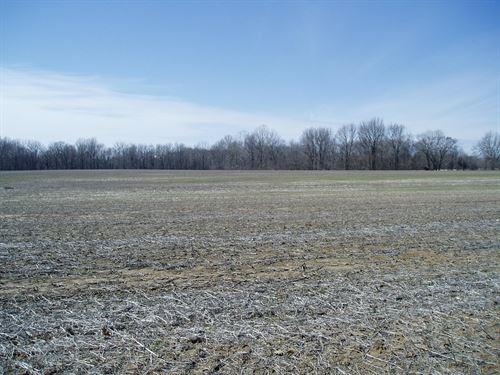 Farm Ground in S.E, Missouri : Puxico : Stoddard County : Missouri