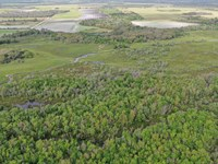 Myakka River Retreat : Myakka City : Manatee County : Florida