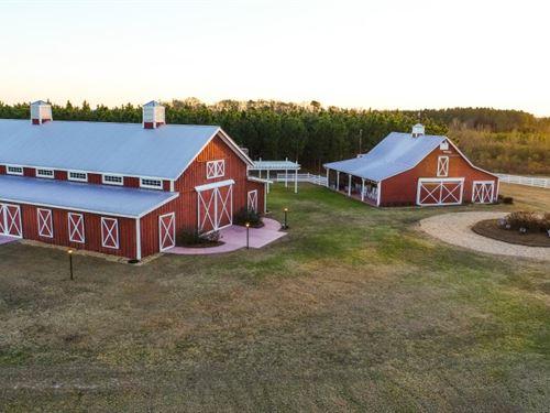 Twin Oaks Farm Retirement Auction : Hawkinsville : Pulaski County : Georgia