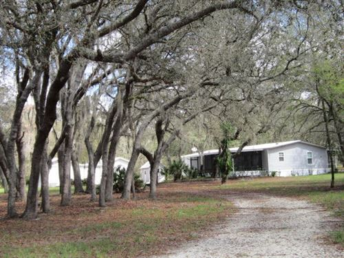Privacy, Seclusion Wooded Area : Lake Wales : Polk County : Florida