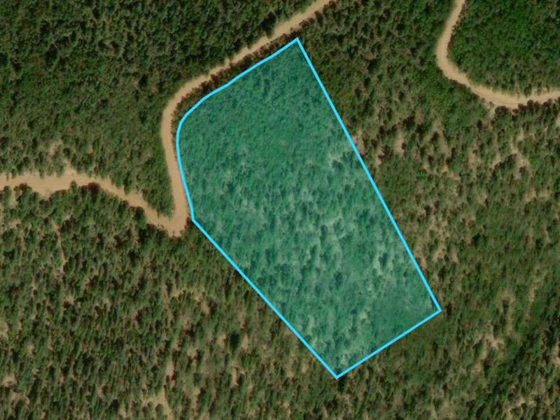 For Sale By Owner Colorado >> High Altitude W Trees In Colorado Farm For Sale By Owner Fort