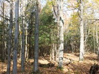 Outdoorsman's Dream : Hermon : Saint Lawrence County : New York