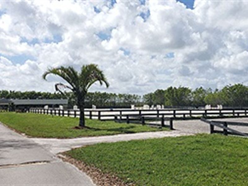 Horse Ranch With Home : Wellington : Palm Beach County : Florida